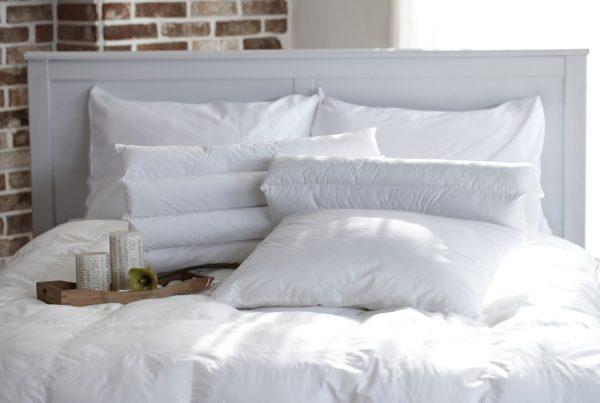 quel oreiller choisir